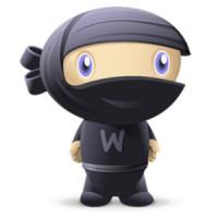 woothemes-ninja3